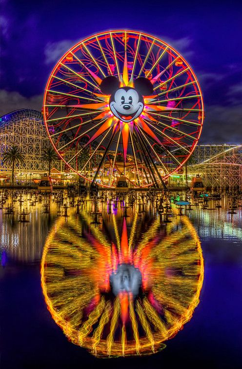 Disneyland - California Adventure. Beauty.