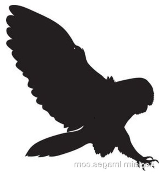 Owl Flying Silhouette Owl silhouettes flying owl sil ...