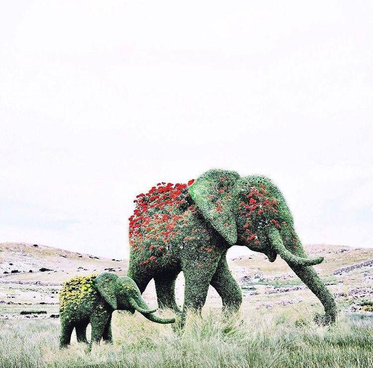Surreal Digital Illustrations Portray Fairy Tale Worlds Luisa Azevedo