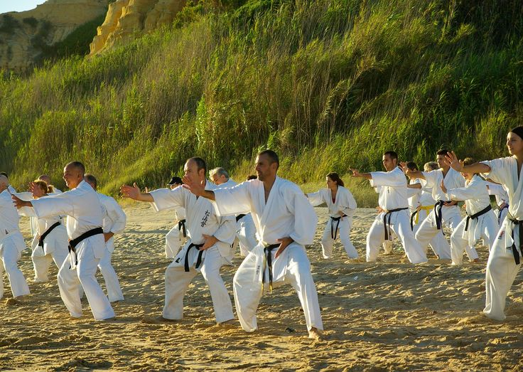 Not Just a Martial Art, a Lifestyle  #martialart #karate #martialartscamp #Lifestyle #physicalactivity #healthylife #retrigoblog #Okinawa #Shuri #Tomari #Naha #Japan