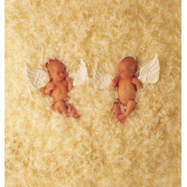 angels :'(
