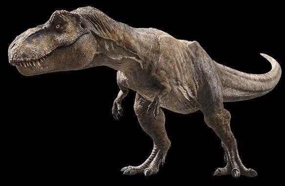 New Photo Of The T Rex From Jurassic World Fallen Kingdom Jurassic Park World Jurassic Park T Rex Jurassic World