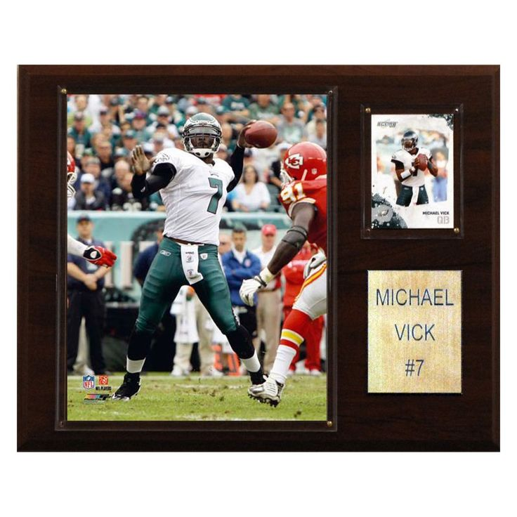 NFL 12 x 15 in. Michael Vick Philadelphia Eagles Player Plaque - 1215VICK