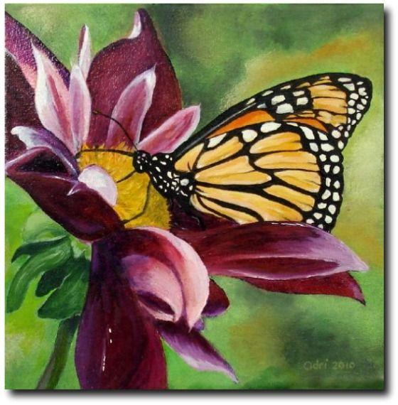 monarchvlinder_2010_olieverf_op_doek_20_x_20_cm