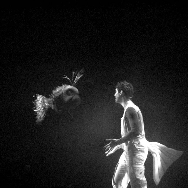 My son loves theater...he says it's so real, Copyright © 2011 Amalia Raptopoulou (Greece), All rights reserved.