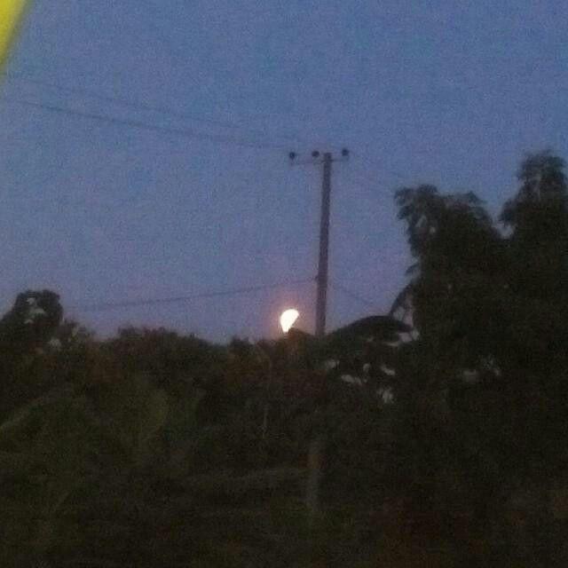 Gerhana Bulan mencapai setengah di Bungah - @hamdi2293