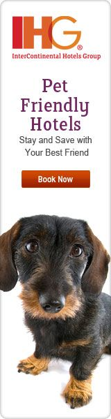 Search For Locations That Are Dog Friendly Shopping Worldwide