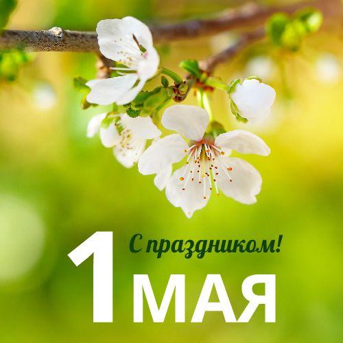 Друзья! Поздравляем вас с праздником весны - с 1 мая!💐🌷🌺 Желаем всем прекрасных выходных!💃🎉☀️  #1май #мир #труд #май #праздники #выходные #первомай #отдыхаемхорошо #чиаро #chiaro