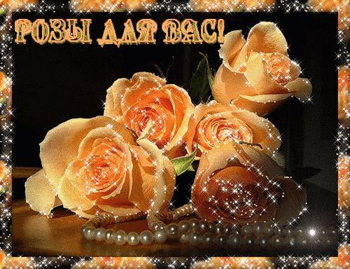 Красивые Розы для Вас - Плейкасты