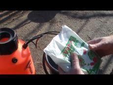 Обработка виноградника после открытия - YouTube