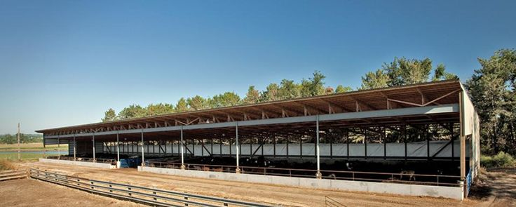 39 best beef facilities images on pinterest beef meat for Design your own pole barn online