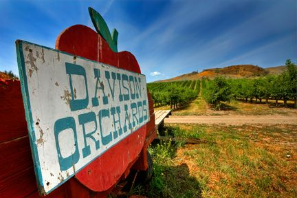 Davison Orchards Country Village & Orchard Tours Vernon BC Canada