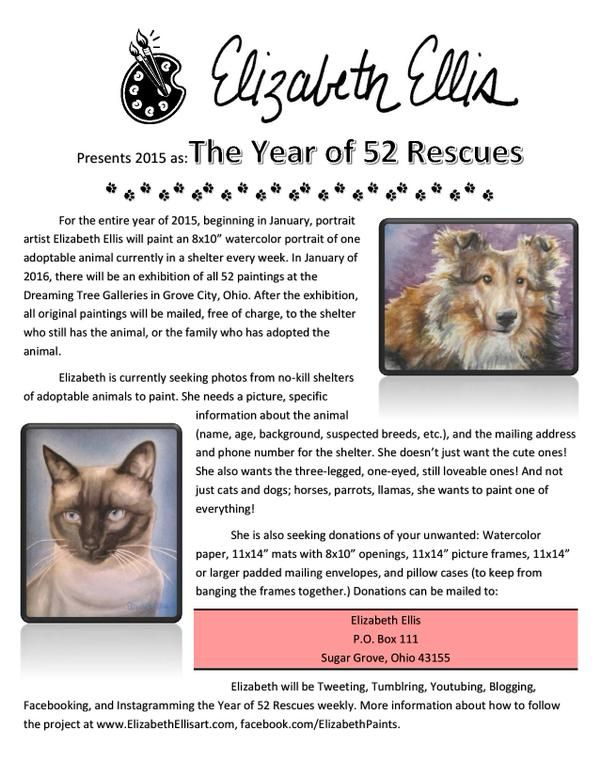Printable flier describing Elizabeth Ellis' pet rescue painting project. Please pin this, Facebook it, Tweet it, or print it to hang in your vet's office, groomer, pet store, doggy day care, etc. The more people I reach, the more animals I can help!