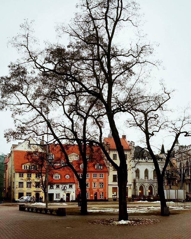 🔔Rigagram🔔xxx . . . #riga #latvia #easterneurope #europe #eu #european #beauty #beautiful #love #peace #rain #culture #travel #wanderlust #instamood #travelgram #igtravel #instatravel #colors #sky #nature #fun #architecture #style #best #girl #weather #people #russia #trees by indiainternational. instatravel #sky #peace #culture #instamood #latvia #russia #trees #easterneurope #nature #rain #love #architecture #riga #people #girl #colors #weather #best #fun #beautiful #style #travelgram…