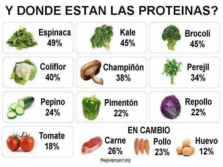 Descripción de proteínas en algunos vegetales | Alimentos