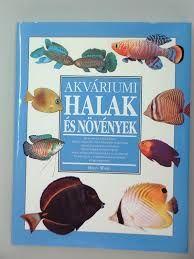 """Képtalálat a következőre: """"akváriumi halak képekkel"""""""