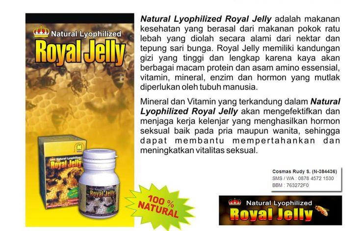 Royal Jelly memiliki kandungan gizi yang tinggi dan lengkap karena kaya akan berbagai macam protein, vitamin, asam amino esensial, mineral, enzim dan hormon yang mutlak diperlukan oleh tubuh manusia.