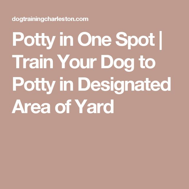 Best 25 Dog Run Yard Ideas On Pinterest Outdoor Dog