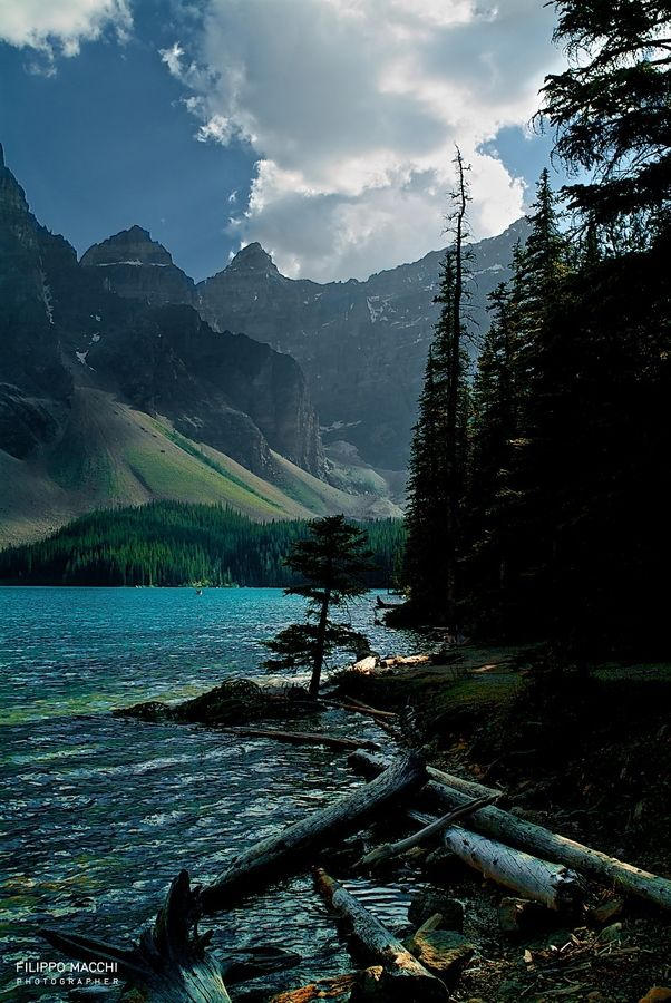 628 best fly fishing images on pinterest fly fishing for Fishing in banff
