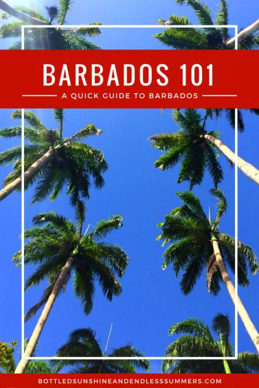 Here is a list of helpful and useful information which will prepare you for life on the picturesque island of Barbados!