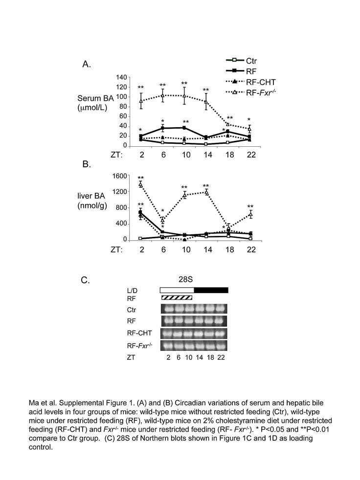 Background Bile acids are potentially toxic compounds and their levels of hepatic production, uptake and export are tightly regulated by many inputs, including circadian rhythm. We tested the impact of disrupting the peripheral circadian clock on integral steps of bile acid homeostasis.  Methodology/Principal Findings Both restricted feeding, which phase shifts peripheral clocks, and genetic ablation in Per1−/−/Per2−/− (PERDKO) mice disrupted normal bile acid control and ...