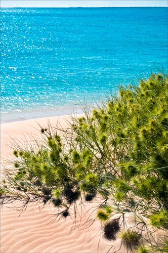 Beach at Dunes, Ningaloo Reef, Exmouth, Western Australia by Brendon and Jude Weston