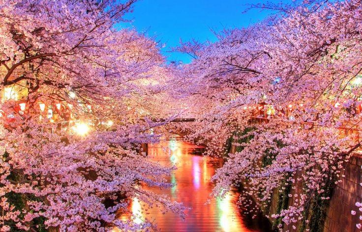 korea-spring