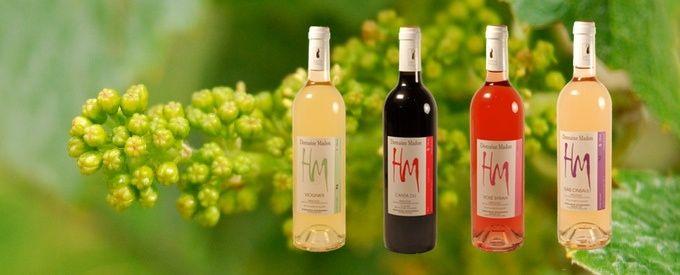 Vin Pays d'Oc, AOP, rouge, rosé, gris, blanc, domaine MADON