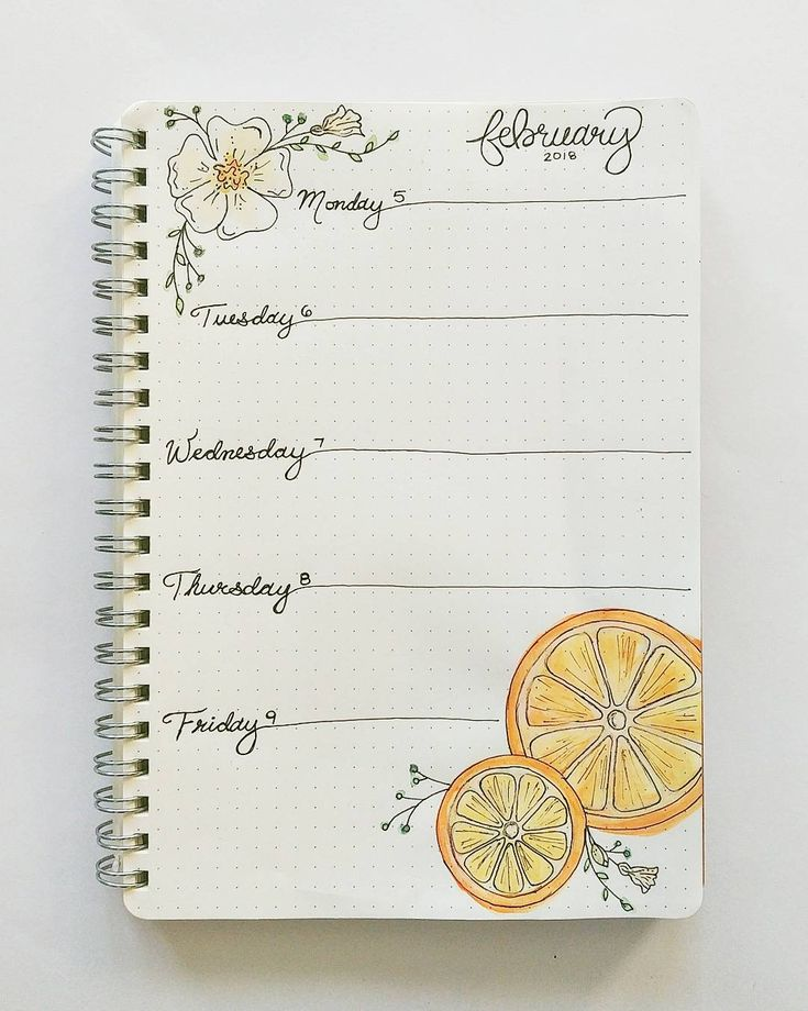 Bullet journal weekly layout, one paged bullet journal weekly layout, cursive daily headers, flower drawing, fruit drawing. | @thebulletpoint
