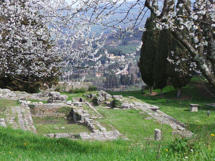L'area archeologica in primavera