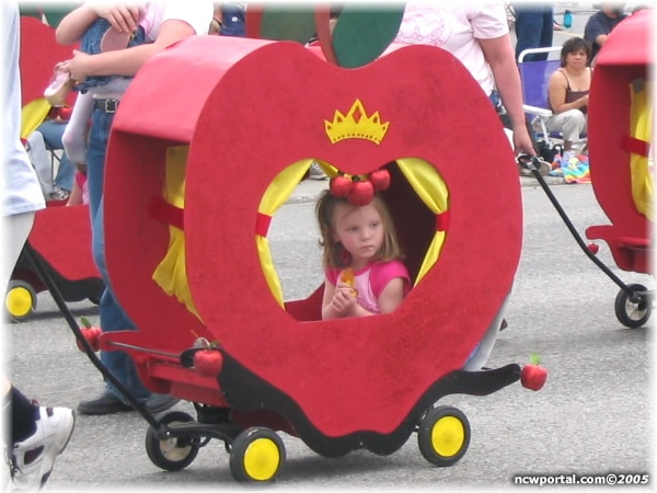 17 best images about stroller doll carriage ideas on for Princess float ideas
