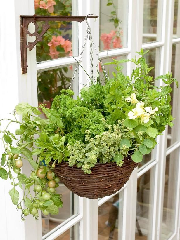 The gardening experts at HGTV.com show how to grow herbs and tomatoes in a hanging basket.