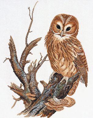 "Eva Rosenstand ""Tawny Owl"""