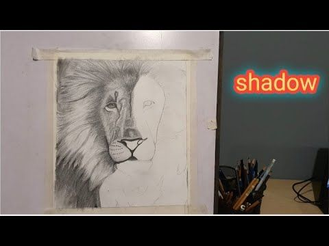 How To Shadow Lion Step By Step In 2021 Shadow Lion Photography