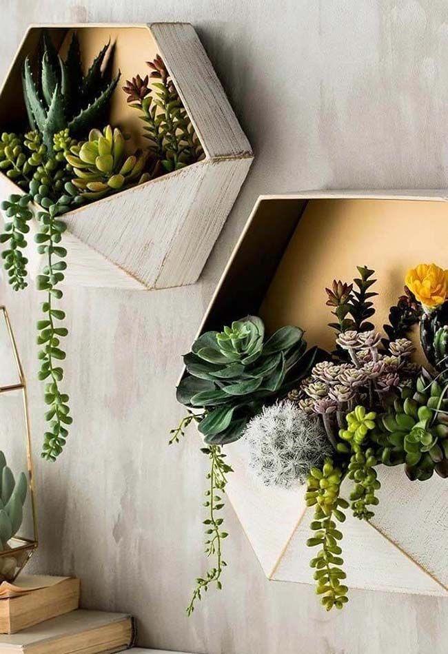 Decoracion con plantas decoracionconplantasexterior for Decoracion con plantas suculentas