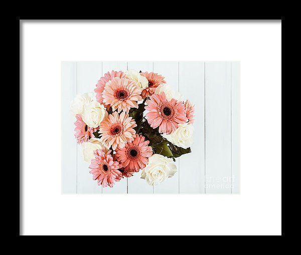 Pink Gerbera Daisy Flowers And White Roses Bouquet Framed Print