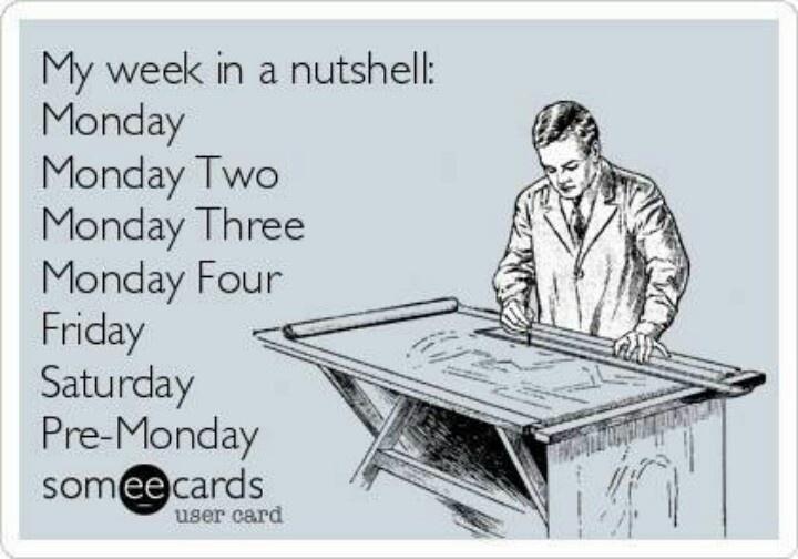 mondaysFunny Monday Ecards