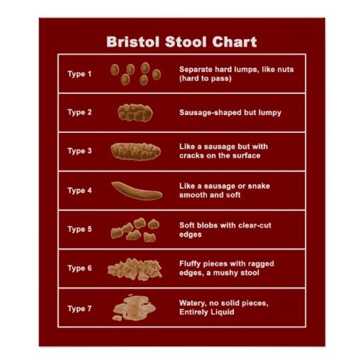 Best 25+ Bristol stool scale ideas on Pinterest Poo chart - stool color chart