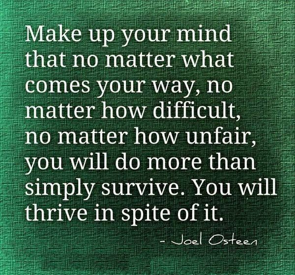 """""""Make up your mind that no matter what comes your way, no matter how difficult, no matter how unfair, you will do more than simply survive. You will thrive in spite of it"""" -Joel Osteen"""