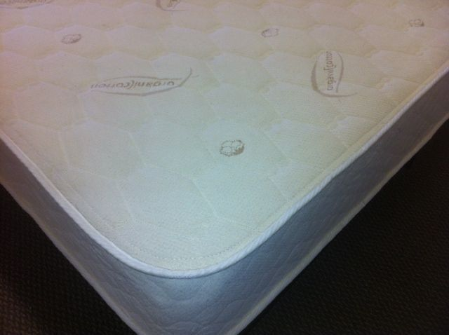 Latex Beds for Kids, Eco Sleep Promotional Latex Mattress w/Bamboo Cover, Latex Mattresses-All Natural & Talalay Latex Bed, All Products
