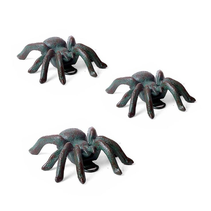 Cast Iron Wall Mounted Garden Ornament Small Verdigris Tarantula Spider  #Gardens2you
