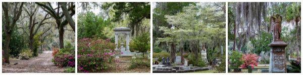 Bonaventure Cemetery - Savannah, GA Photos by www.nancykirkpatrickphotograohy.com