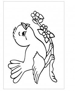 25 Best Bird Coloring Pages Images On Pinterest