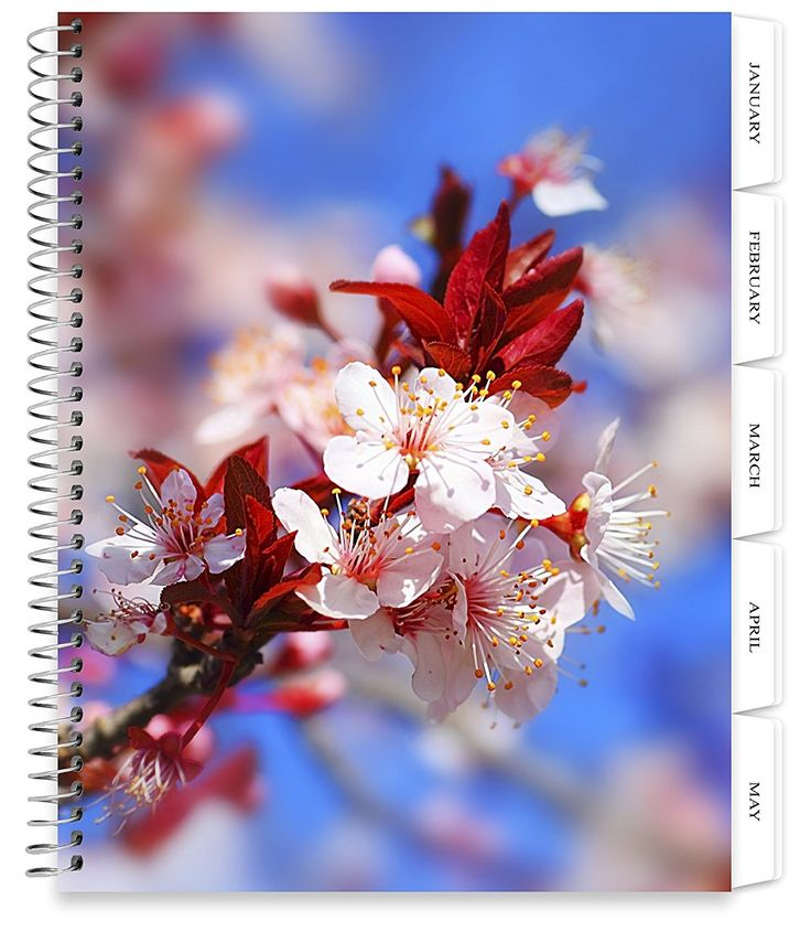 2018 Softcover Planner with Tabs - JAN-DEC 2018 - Flower Bokeh