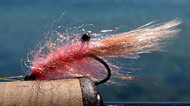 Tying shrimp flies - How to tie the best shrimp fly patterns - Global FlyFisher