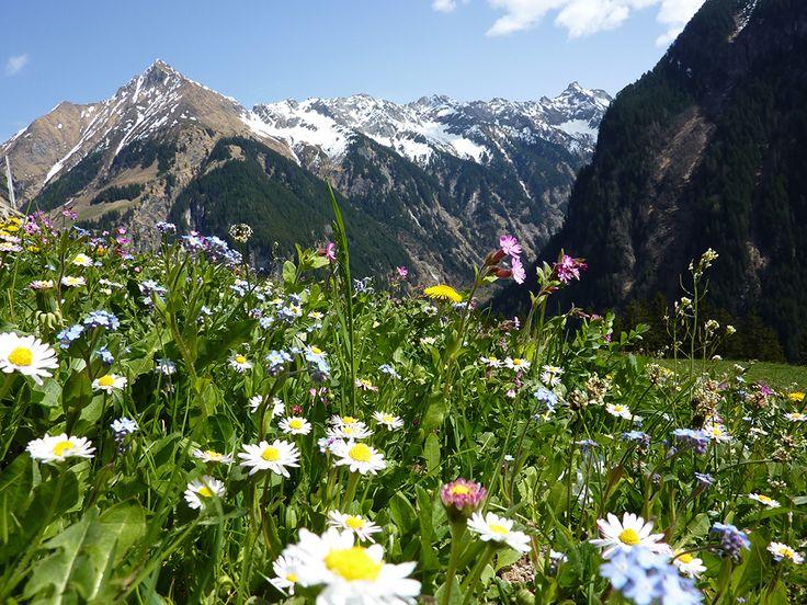 Urlaub #Paznauntal; Wandern und Biken in der eindrucksvollen Berglandschaft in #Tirol: www.hikeandbike.de