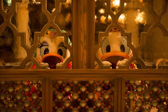 東京ディズニーリゾート~ある日の一枚~ デイジーが覗き込むとすかさずドナルドも覗き込む。