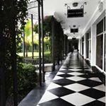 "186 Likes, 7 Comments - The Royal Poinciana Plaza (@theroyalpoincianaplaza) on Instagram: ""Sky blue Sundays."""