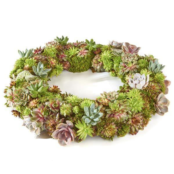 Krans & Planten.  Velen van u bezoeken met regelmaat een graf of een herdenkingsplaats van uw overleden dierbaren. Het is dan niet ongebruikelijk om bloemen of planten te plaatsen. Gemaakt door Afscheid met Bloemen.