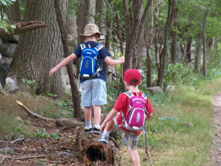 New Tips to Keep Your Child Healthy While You Hike - http://gazettereview.com/2015/08/new-tips-to-keep-your-child-healthy-while-you-hike/